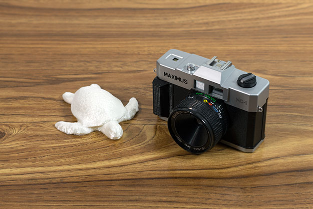 turtle and camera comparison