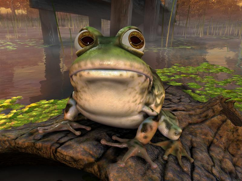 big_froggy_1.jpg
