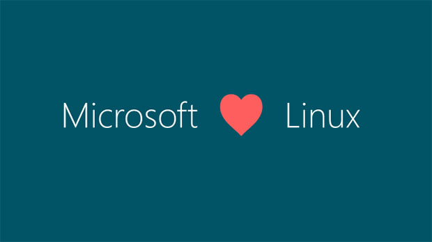 ms loves linux