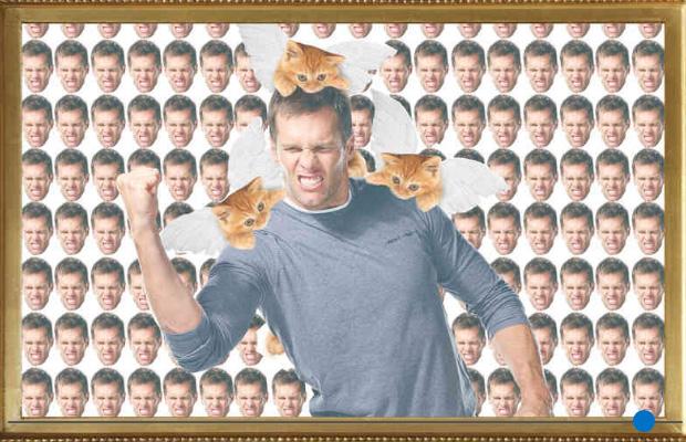 Tom Brady Cats