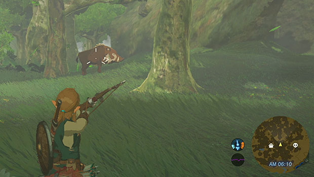 Zelda Breath of the Wind