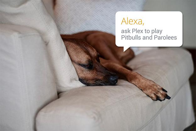 Plex Alexa