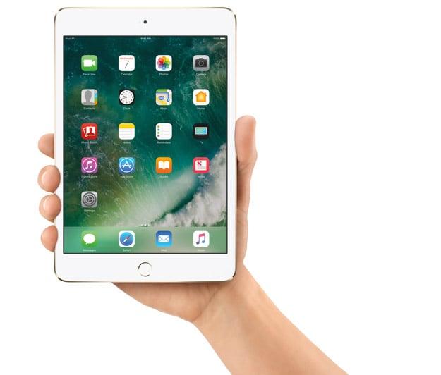 iPadMini4 Hand PRINT