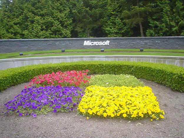 Microsoft Garden