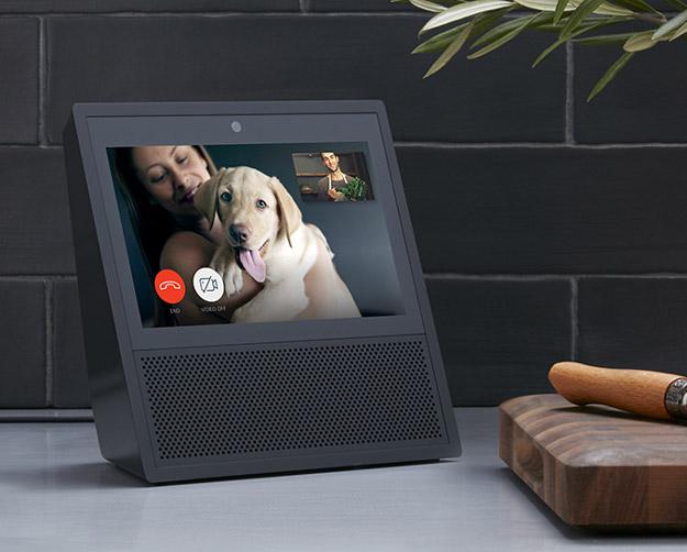 echo show dog on screen