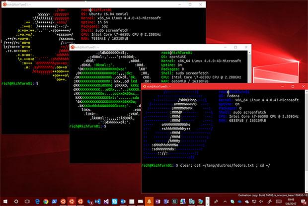 Windows Running Linux