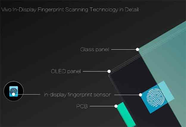Vivo Fingerprint Scanner