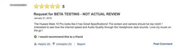 bbfake review