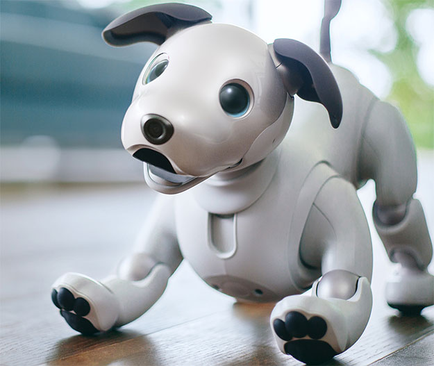 Sony's Aibo Robot Dog Is Super...