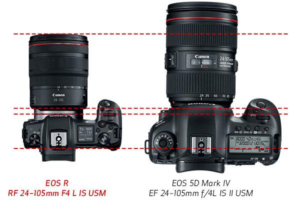 Canon EOS R and EOS 5D Mark IV