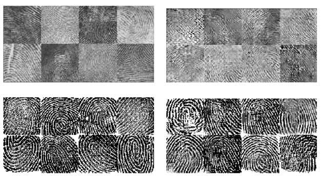 ai fingerprint