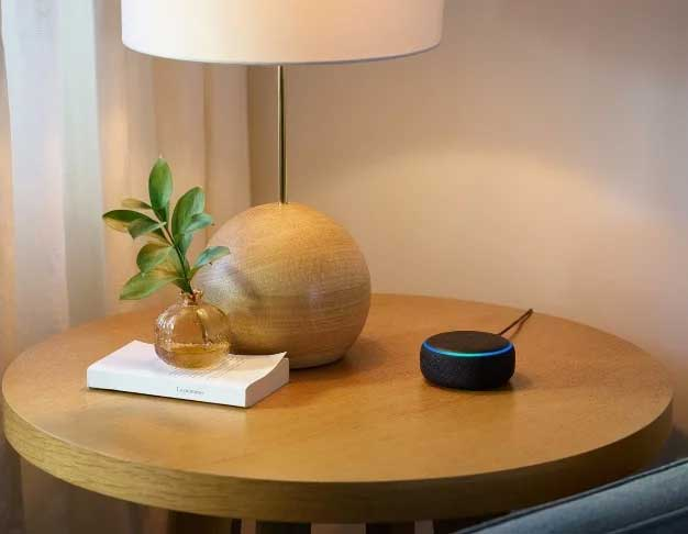 echo dot table