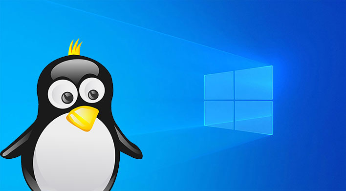 Windows 10 Linux Penguin
