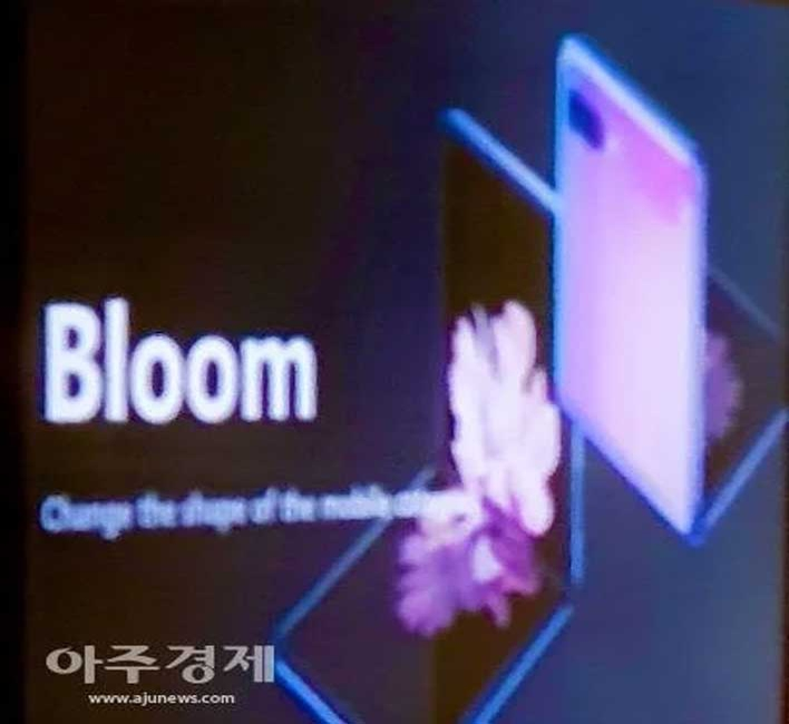 bloom scaled
