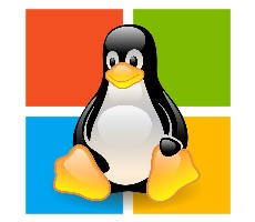 Outlandish Theory Suggests Microsoft Will Ditch Windows Kernel In Favor Of Linux