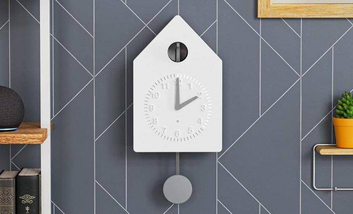 amazon build it program cuckoo clock