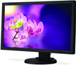 NEC Goes for the Gold (Rating) with Eco-Friendly E231W LED Monitor