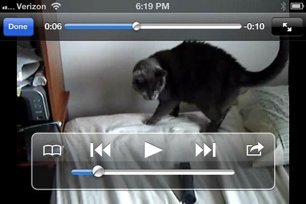 YouTube Cat vs Shaver