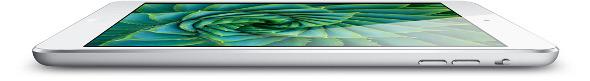 iPad Mini Flat
