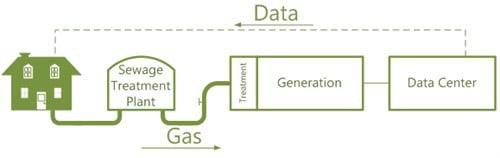 data plant chart