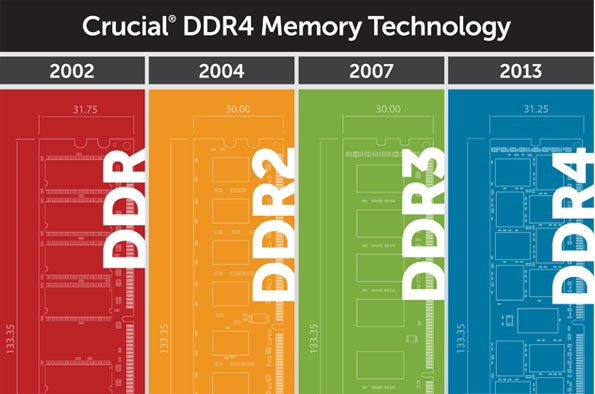 DDR Infographic