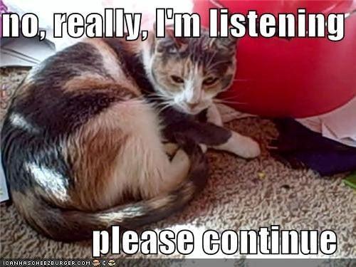 Cat Listening