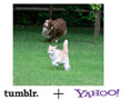 Yahoo Officially Seals The Deal With Tumblr