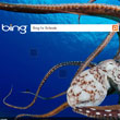 Microsoft Pushing Ad-Free Bing Search Services in Schools