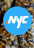.NYC Approved As Top-Level Domain For New York City