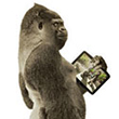 Next-Gen Gorilla Glass: Smartphones Could Have Antibacterial, Anti-Glare Displays