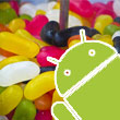 Nearly Half of All Android Devices Have Jumped to Jelly Bean
