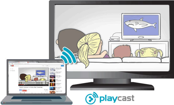 PlayOn Launches PlayCast Channel to Roku, Users Can Stop