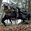 Googlebots Roll Out! Google Acquires Boston Dynamics to Build Its Mechanized Army