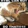 Facepalm Moment: Study Finds 11 Percent of Americans Think HTML is a Sexually Transmitted Disease