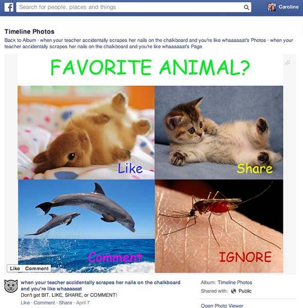 Facebook like-baiting