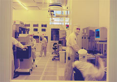 AMD Launches Full Scale Production Volumes At 65nm
