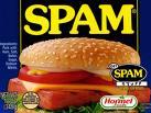 Spammers Strike Back!