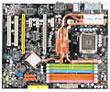 MSI P35 Platinum Combo Motherboard