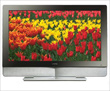 Vizio Jumps Sony For #2 In US Flat-Panel Sales
